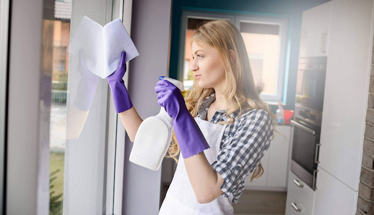 Cover Friendly Cleaners Dachfenster