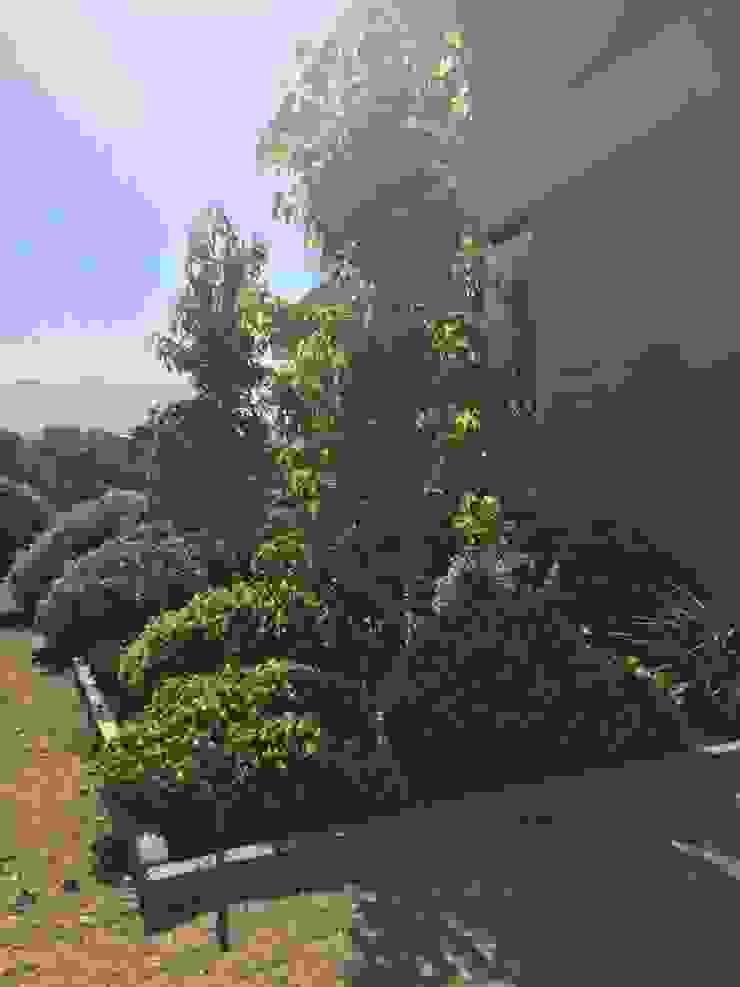 Jardín Familia Huidobro Jardines de estilo moderno de Aliwen Paisajismo Moderno