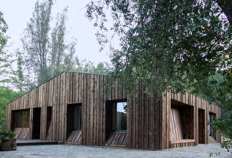 by Crescente Böhme Arquitectos Modern Wood Wood effect