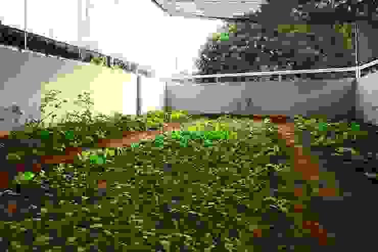 Abri de jardin de style  par Công ty TNHH Xây Dựng TM – DV Song Phát,