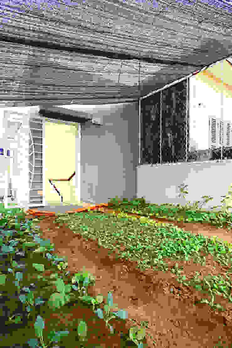 Thiết Kế Nhà Ống 3 Tầng Có Vườn Rau Trên Sân Thượng bởi Công ty TNHH Xây Dựng TM – DV Song Phát Hiện đại