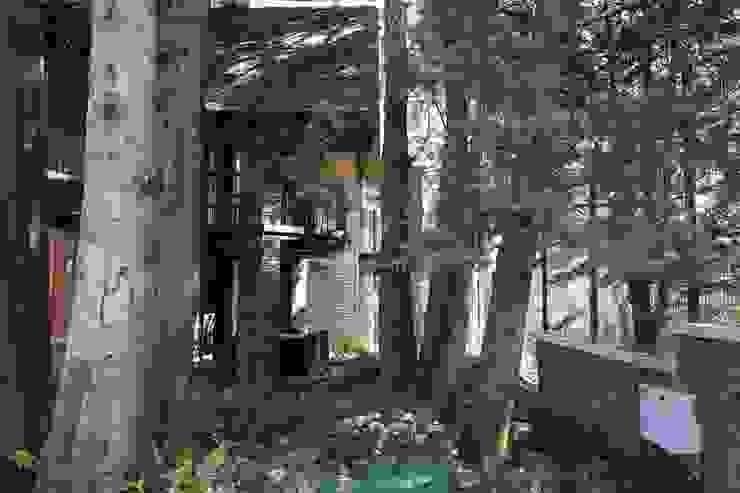 Verde Lavanda Палісадник Дерево Бірюза