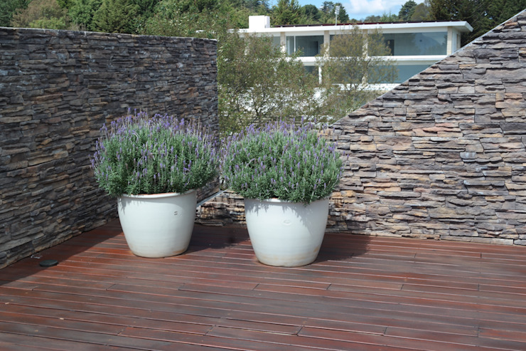 Roof garden Verde Lavanda Jardines en la fachada Madera Turquesa