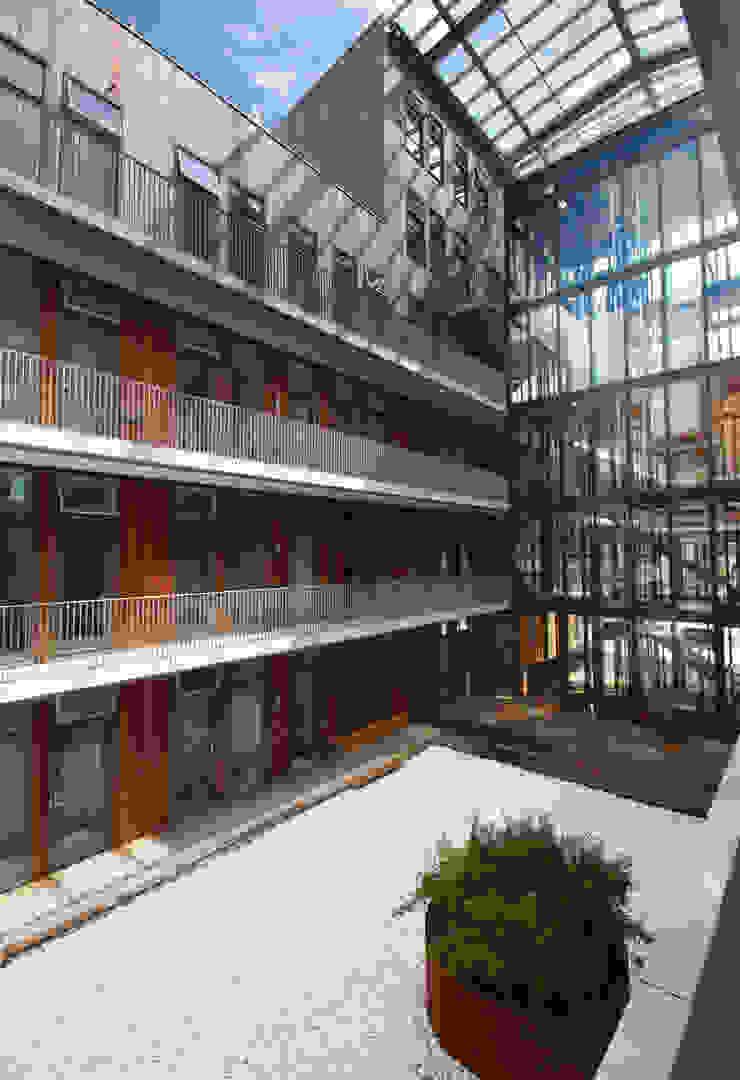 TEKTON architekten Taman Modern