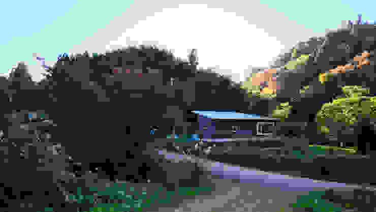 Maisons originales par 水野建築研究所 Éclectique Bois Effet bois