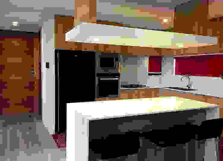 MZH Design Modern Kitchen