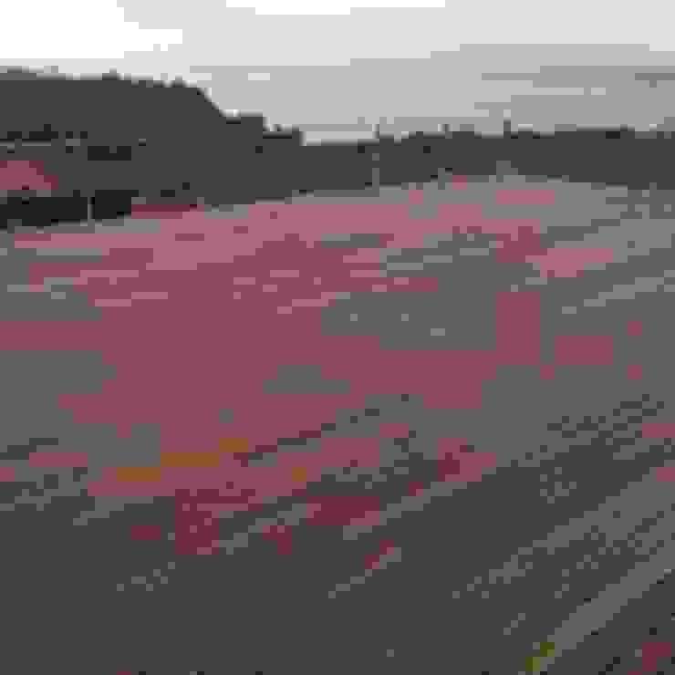 Drevo - Wood Solutions Lda Floors