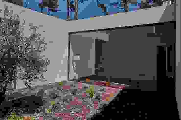 isabel Sá Nogueira Design Jardins modernos