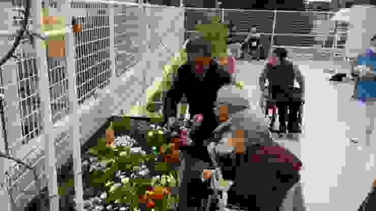 株式会社ムサ・ジャパン ヴェルデ Eclectic style garden