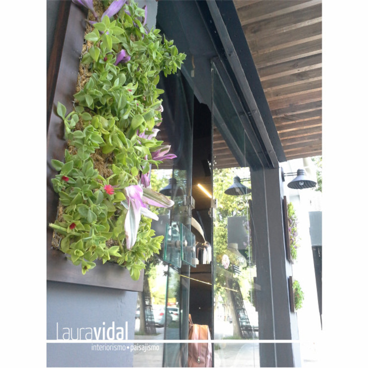 Diseño e intervención de Fachada - Local Comercial: Jardines en la fachada de estilo  por Laura Vidal Estudio de Paisajismo - Interiorismo,