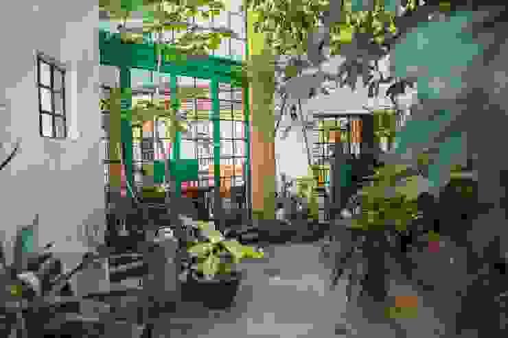 Jardin Jardines mediterráneos de homify Mediterráneo
