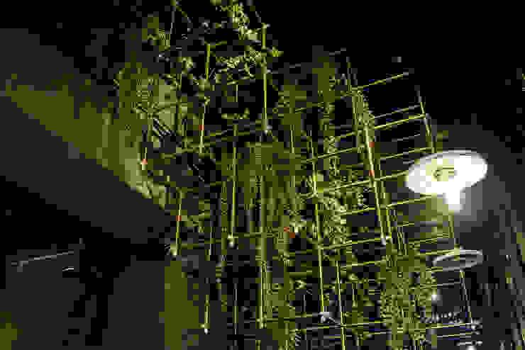 소로리 카페 by 쿠나도시건축연구소