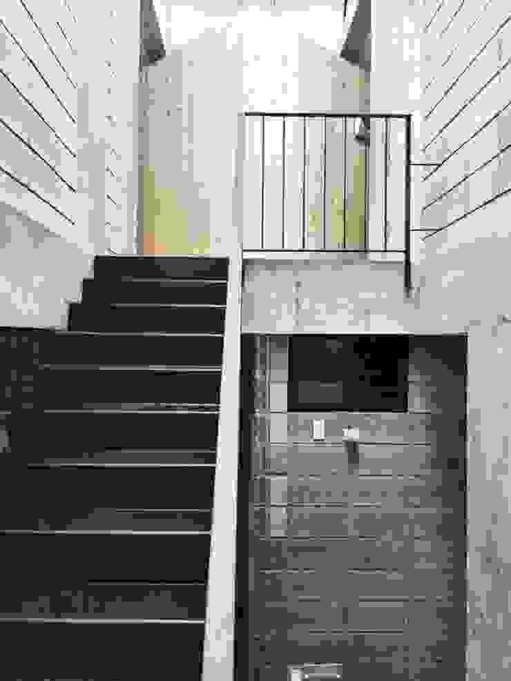 M3 House by Atelier ACID bởi Atelier Acid Nhiệt đới