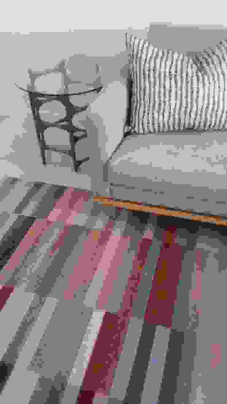 Living room: modern  by MINIM INTERIOR DESIGN, Modern Cotton Red