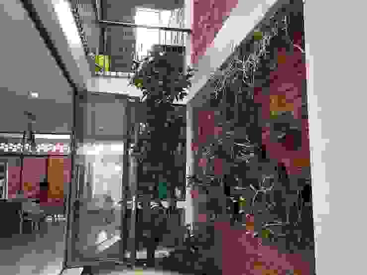 Thiết kế vườn đứng độc đáo được thêm vào ngay trước nhà. Cửa sổ & cửa ra vào phong cách châu Á bởi Công ty TNHH TK XD Song Phát Châu Á Đồng / Đồng / Đồng thau