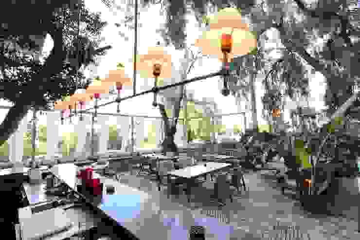 Open Air Bar Hiên, sân thượng phong cách nhiệt đới bởi Orkun İndere Interiors Nhiệt đới
