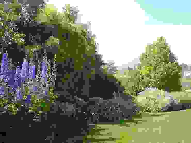 Proyecto de Paisajismo Parcela Talagante Jardines de estilo clásico de Aliwen Paisajismo Clásico