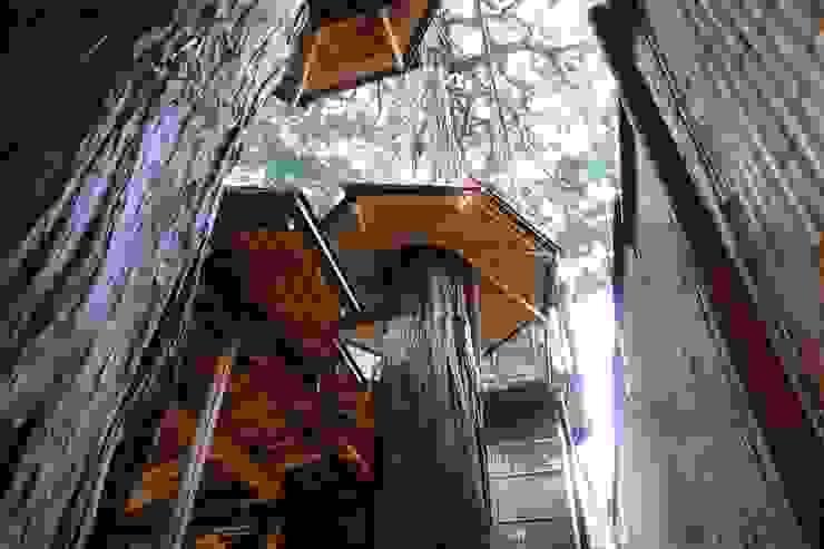 切り欠いた屋根と樹木傘 クラシカルな商業空間 の 守山登建築研究所 クラシック 木 木目調