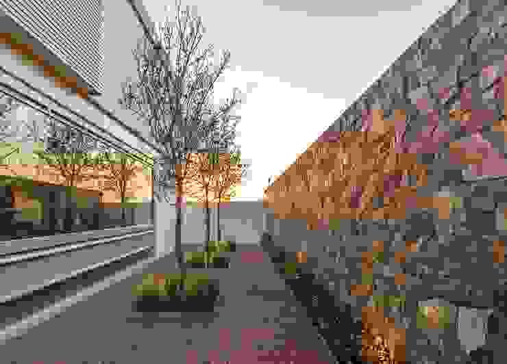 Jardins modernos por Loyola Arquitectos Moderno