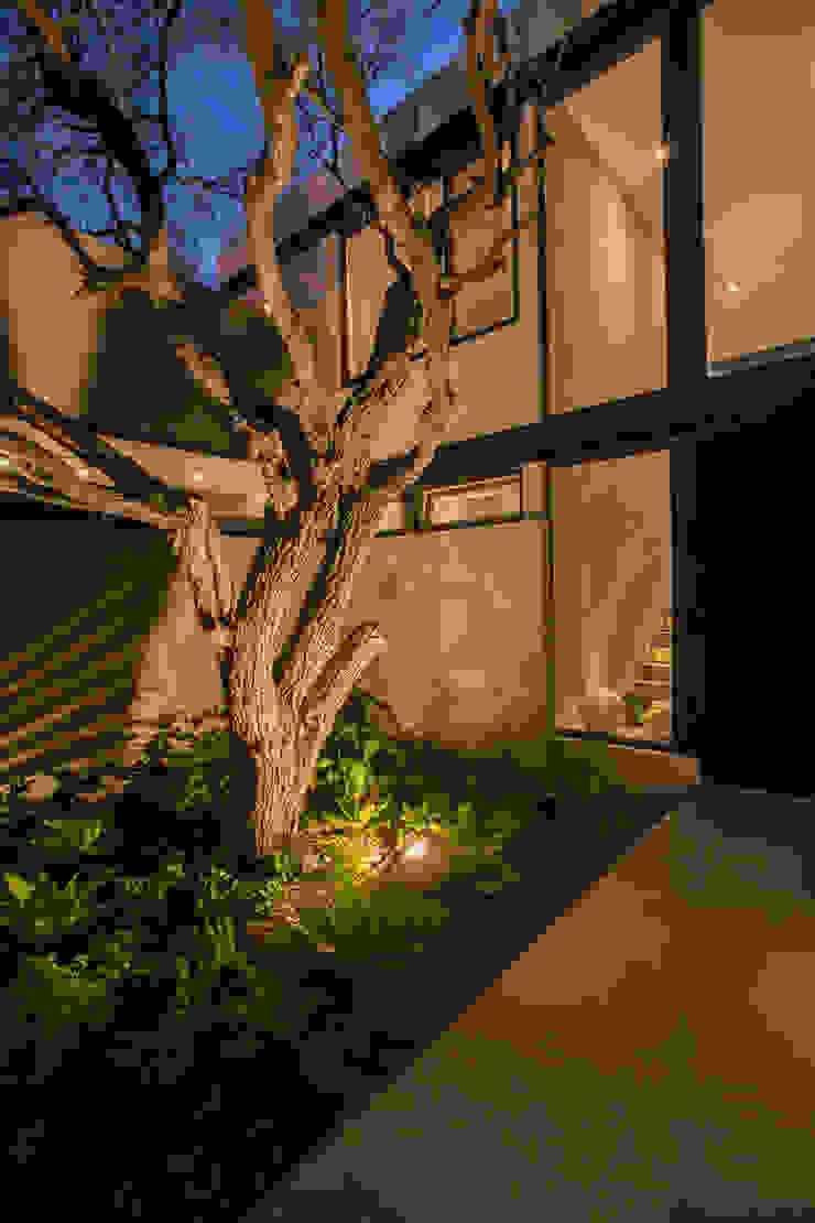 Modern Garden by Loyola Arquitectos Modern