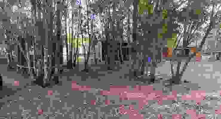 Casa vista frontal de Constructora Rukalihuen Rural Madera Acabado en madera