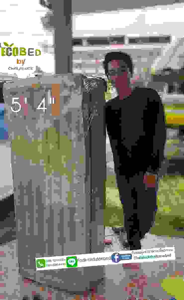 ที่นอนพับได้ 5ฟุต หนา 4นิ้ว queen size organic thai futon: เอเชีย  โดย chalaluck, เอเชียน