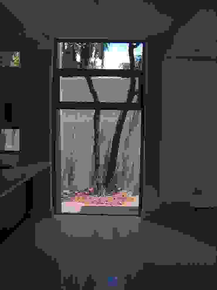 Inso's Aluminium Windows Modern windows & doors by Inso Architectural Solutions Modern Aluminium/Zinc