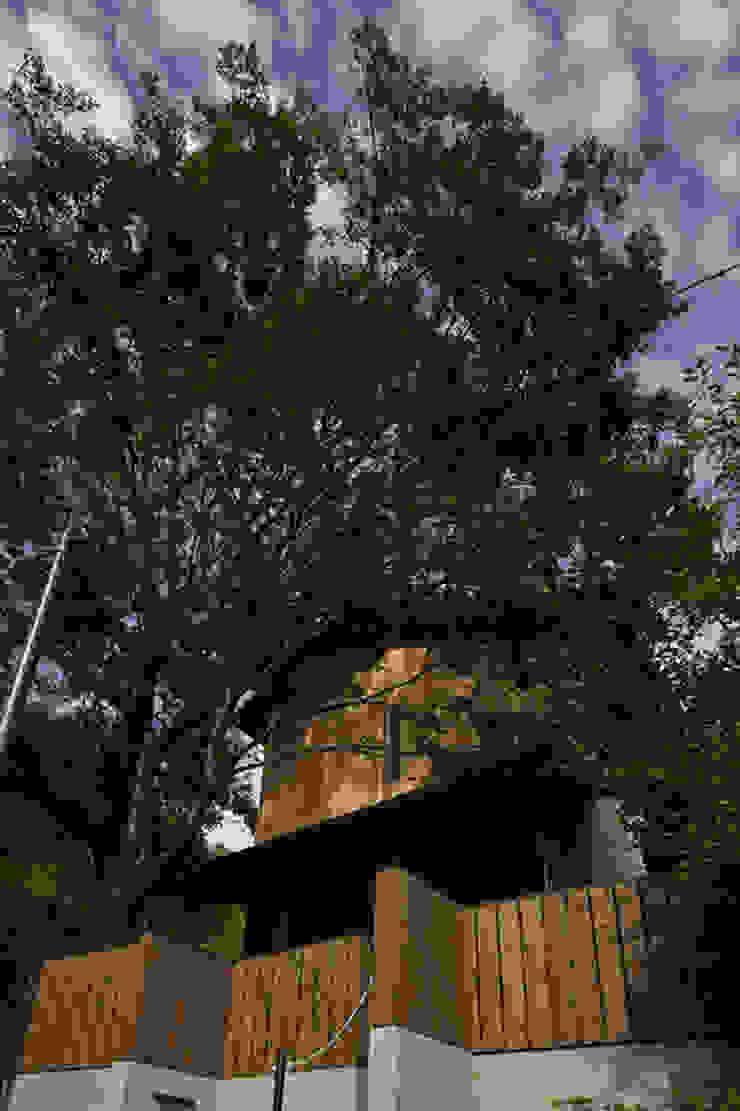 イン・エクスデザイン / in-ex design.Co.,Ltd. Wooden houses