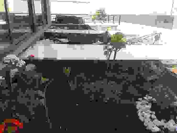 Construcción techo verde de homify Moderno