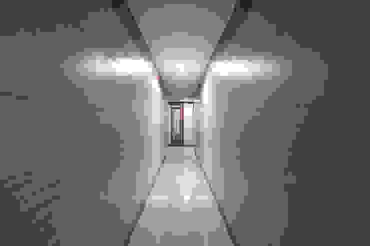 corridor: modern  by Elcon Infrastructure, Modern Plywood