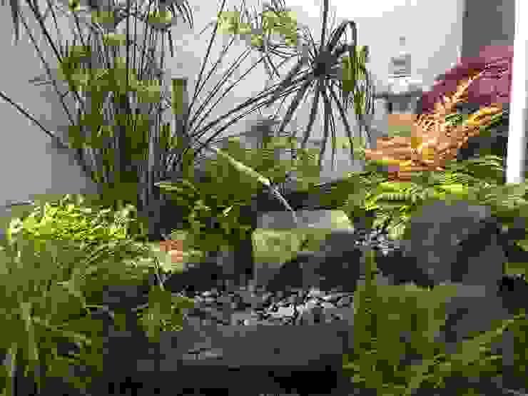 Jardin Zen en un pequeño espacio de Jardines Japoneses -- Estudio de Paisajismo Asiático