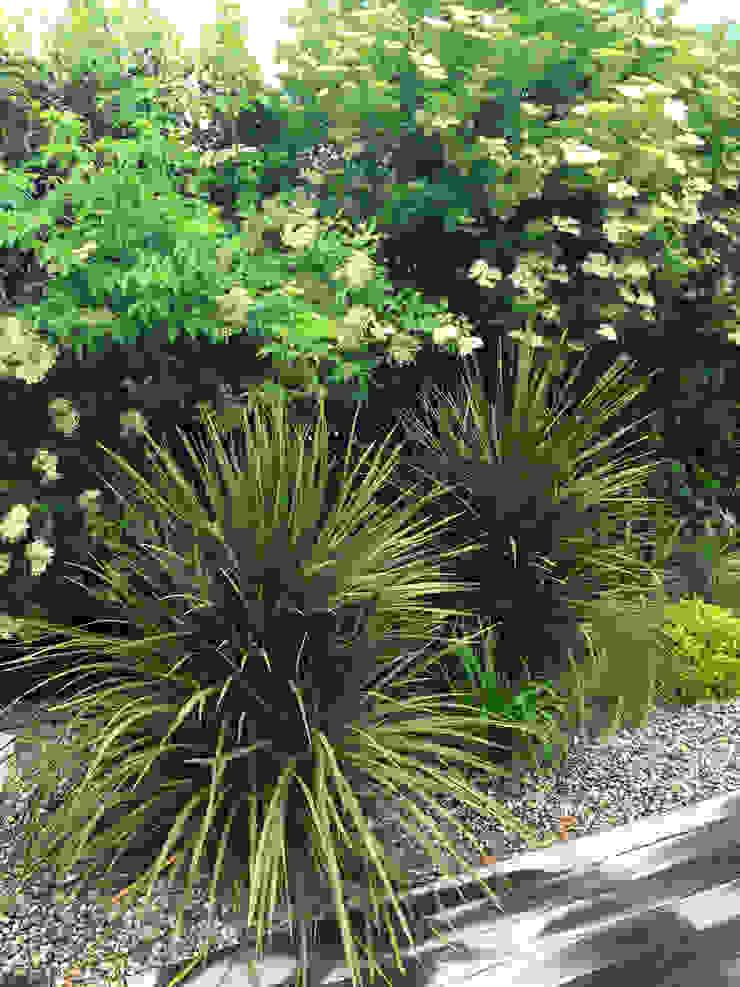 Trente nuances de verts... Jardin tropical par Paradeisos conception de jardin Tropical