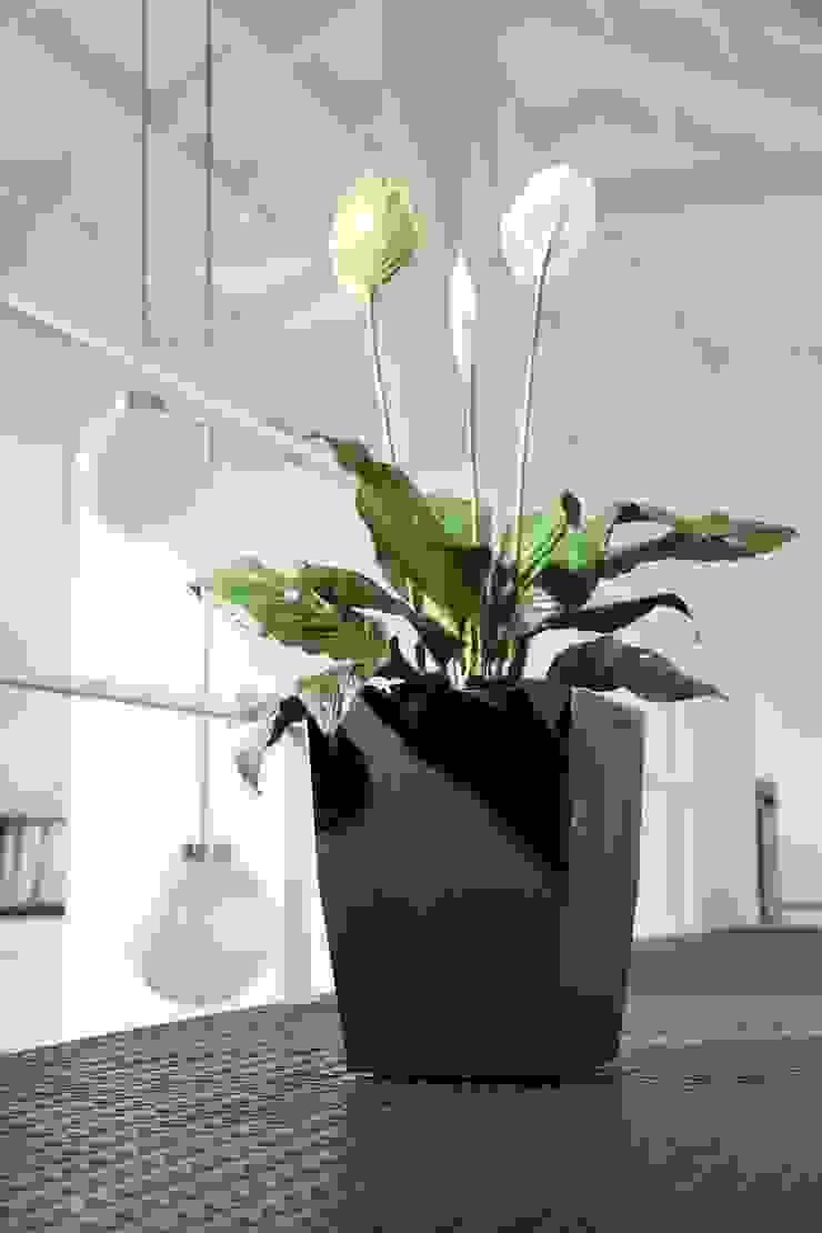 Matera 40cm de Viridis Productos Eco Amigables Moderno Plástico