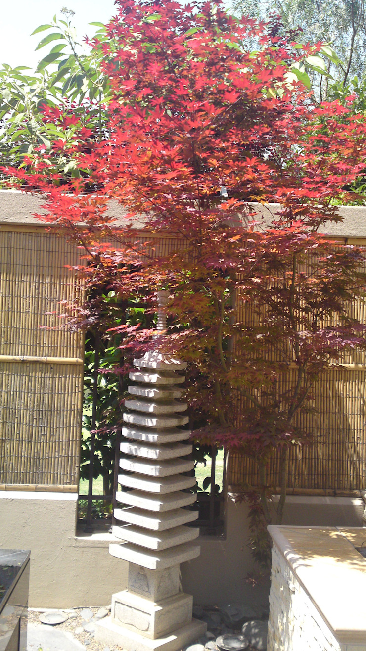 SINDELMAN Asian style garden by Japanese Garden Concepts Asian