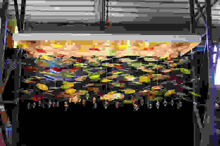 Illuminazione Contract per Hotel di Lusso al Four Seasons di Cipro Гостиницы в тропическом стиле от MULTIFORME® lighting Тропический Стекло