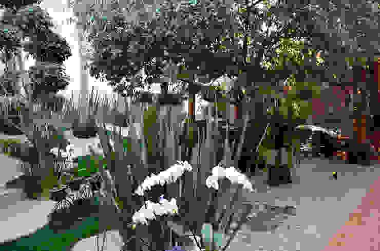 ULC Modern garden