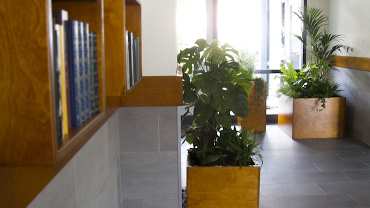 Boekenkast en plantenbakken Moderne gangen, hallen & trappenhuizen van studioMERZ Modern