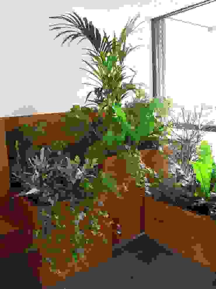 Plantenbakken met groene planten Moderne gangen, hallen & trappenhuizen van studioMERZ Modern