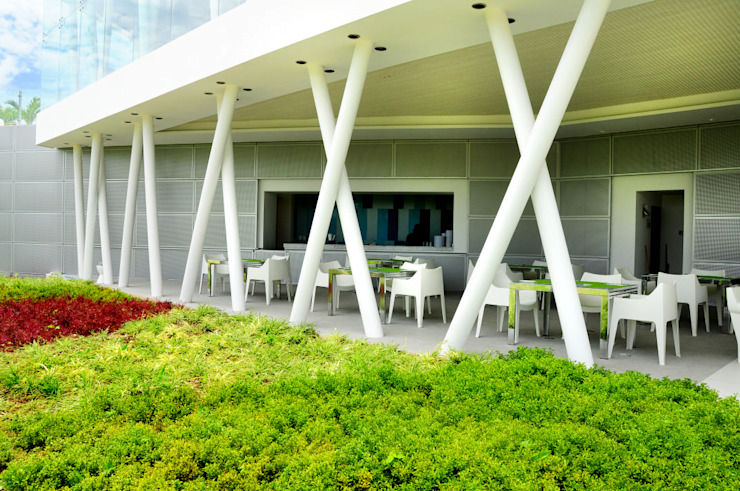 hoyo 19 Comedores modernos de Daniel Cota Arquitectura   Despacho de arquitectos   Cancún Moderno Concreto