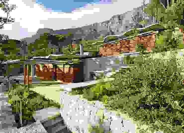 Garden & House Elevation by Van der Merwe Miszewski Architects Modern Wood Wood effect