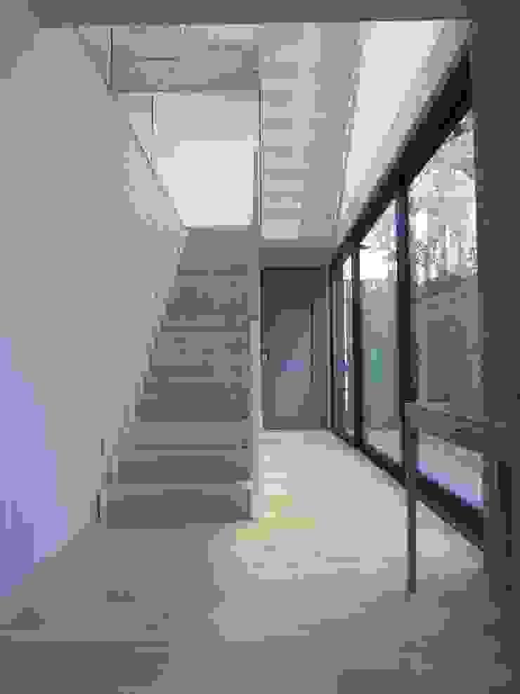 Staircase by Van der Merwe Miszewski Architects Modern Wood Wood effect