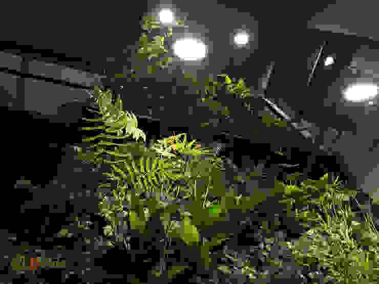 Muros verdes con vegetación nativa Oficinas y bibliotecas de estilo rural de DVida Jardines verticales Rural