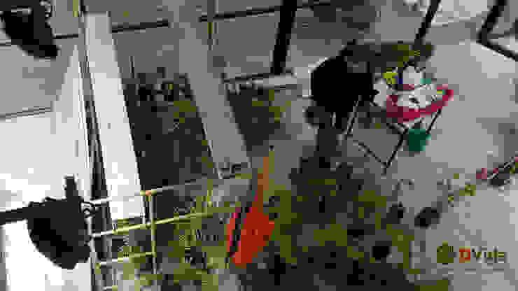 Preparación de plantas muros verdes DVida Oficinas y bibliotecas de estilo rural de DVida Jardines verticales Rural