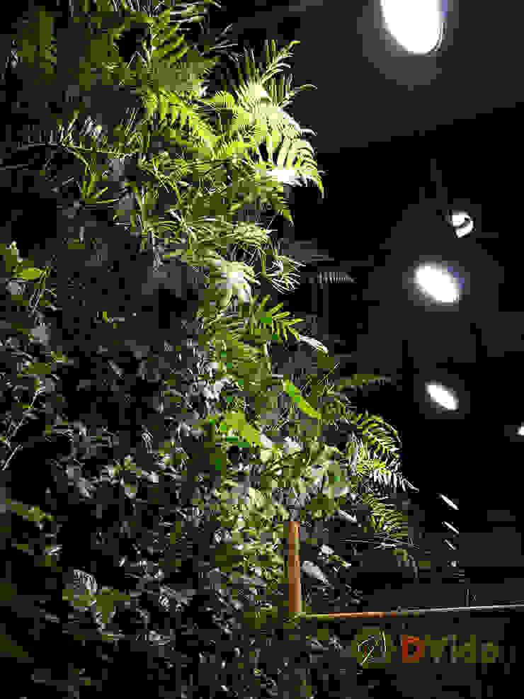 Especies nativas en muros verdes DVida Oficinas y bibliotecas de estilo rural de DVida Jardines verticales Rural