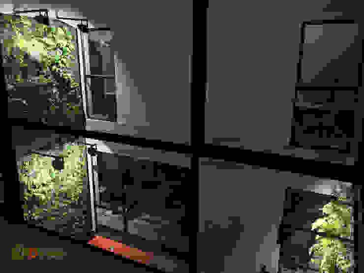Muros verdes en patio interior DVida Oficinas y bibliotecas de estilo rural de DVida Jardines verticales Rural