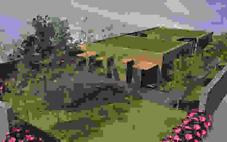 Faille - concept de maison rectangulaire avec patio par Kauri Architecture