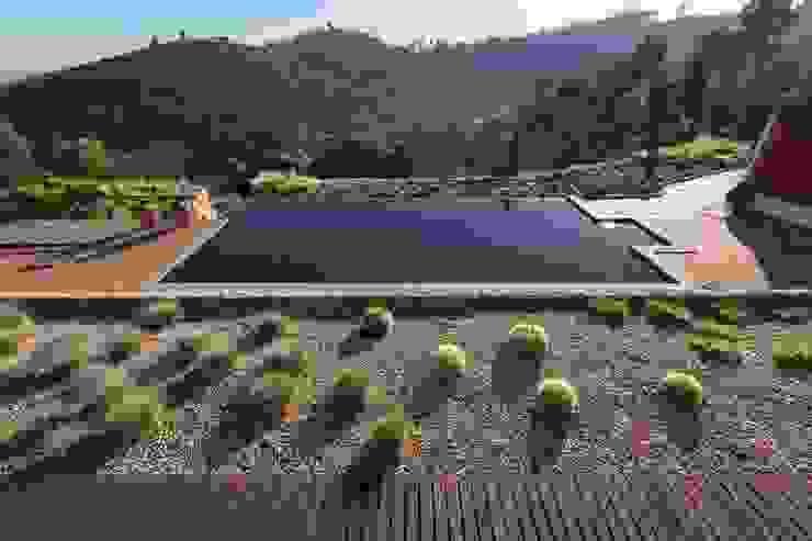 Moradia Moderna com Jardim e Piscina: Jardins de fachada  por Jardíssimo,