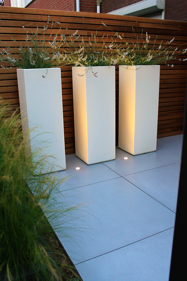 Ibiza tuin Moderne tuinen van Hoveniersbedrijf Guy Wolfs Modern