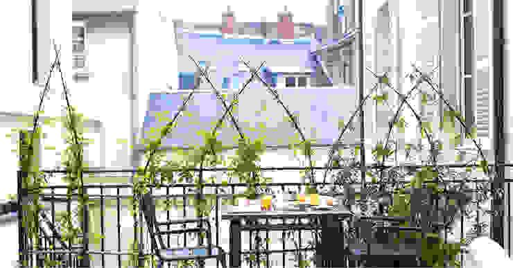 Lumaki, kit végétal - structure brise-vue Archi'Tendances.fr Balcon, Veranda & TerrasseAccessoires & décorations