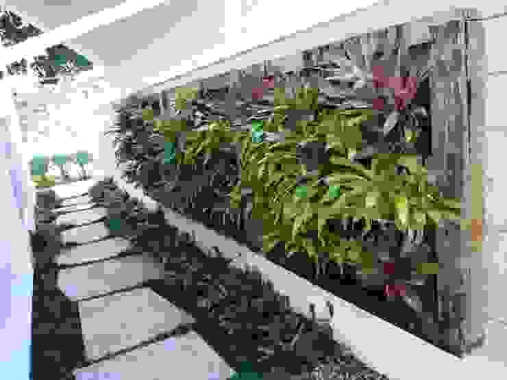 Murs & Sols tropicaux par Raul Hilgert Arquitetura de Exteriores Tropical